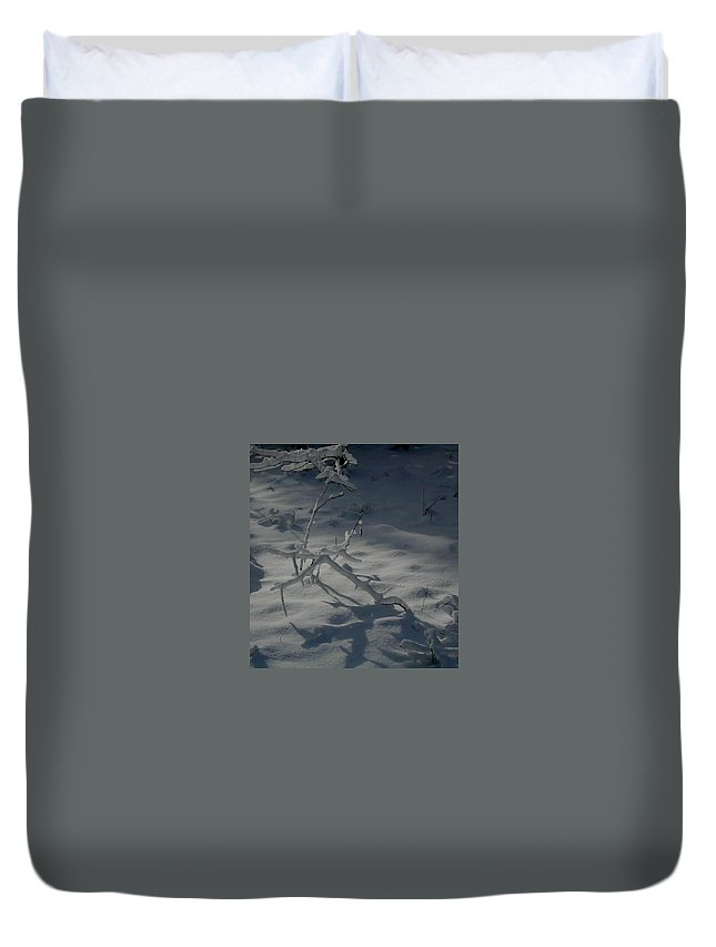 Loneliness Duvet Cover featuring the photograph Loneliness In The Cold by Douglas Barnett
