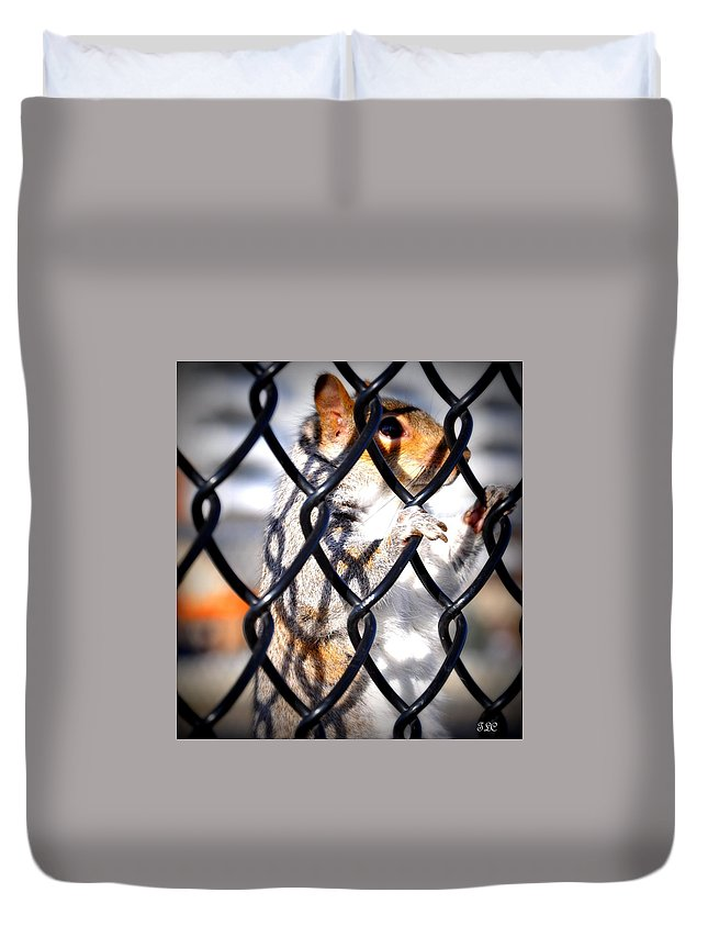 Nature Duvet Cover featuring the photograph Lonely Squirrel by Thomas Comeau