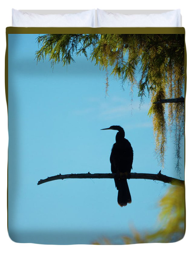 Orcinus Fotograffy Duvet Cover featuring the photograph Lonesome Anhinga by Kimo Fernandez