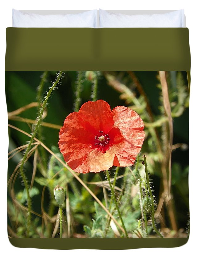 Red Ppoppy Duvet Cover featuring the photograph Lonesome Red Poppy Flower by Vineta Marinovic