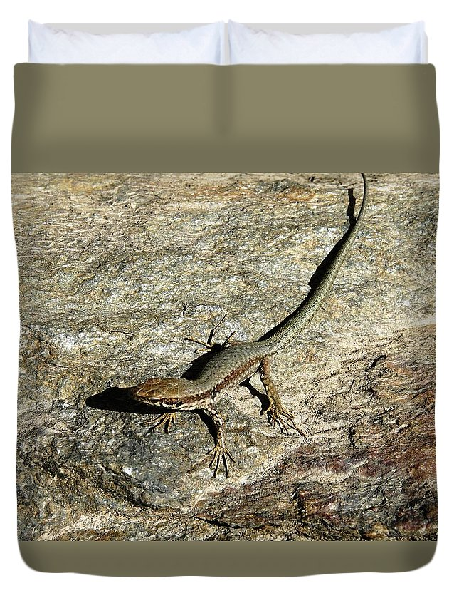 Gecko Duvet Cover featuring the photograph Long Toe by Valerie Ornstein