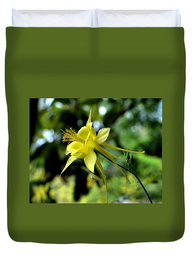 Columbine Duvet Cover featuring the photograph Look To The Skies by Chris Giese