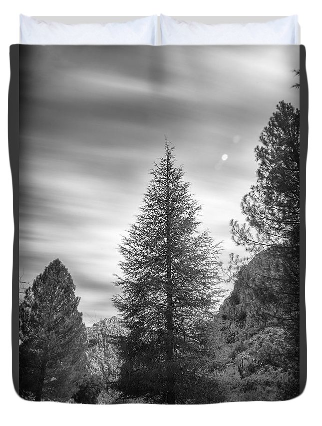 Mono Duvet Cover featuring the photograph Looking For The Sky Into The Woods by Guido Montanes Castillo