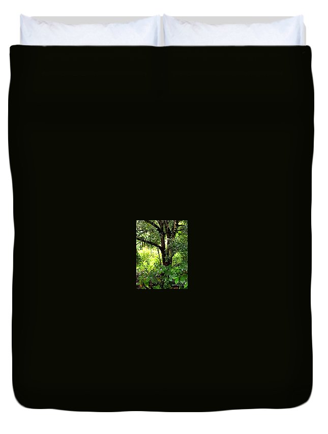 This Is A Photo Looking Into The Rain Forest Of Costa Rica. Duvet Cover featuring the photograph looking into the Jungle by William Rogers
