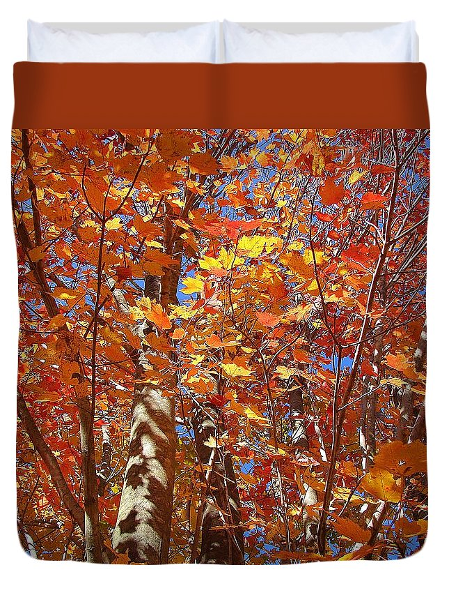 Duvet Cover featuring the photograph Looking Up by Luciana Seymour
