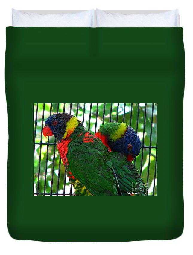 Patzer Duvet Cover featuring the photograph Lory by Greg Patzer