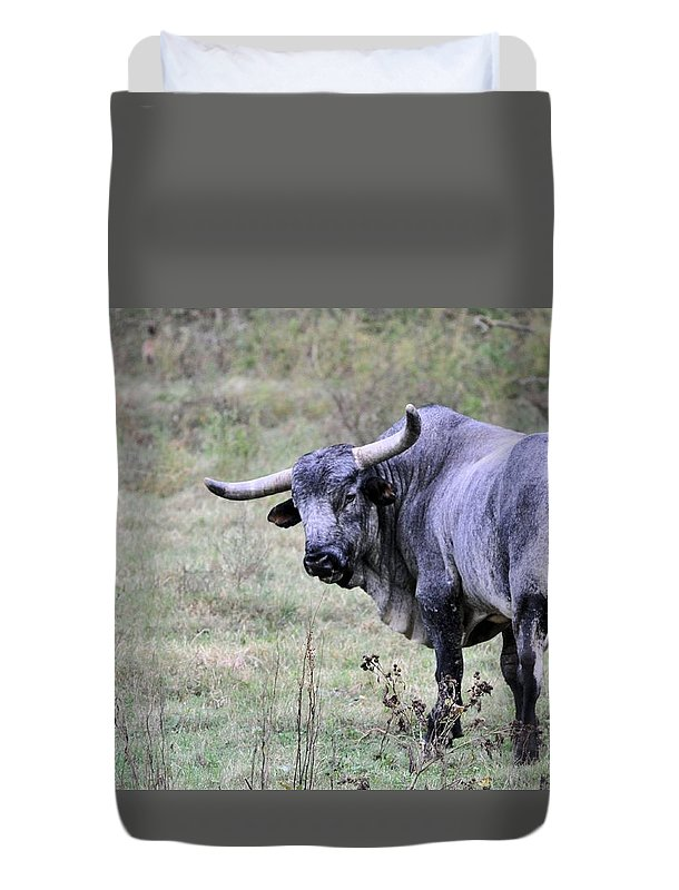 Animals Duvet Cover featuring the photograph Lotta Bull by Jan Amiss Photography