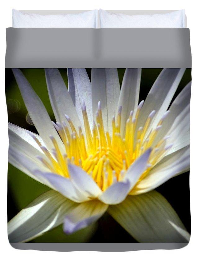 Aquatic Duvet Cover featuring the photograph Lotus 10 by Jijo George