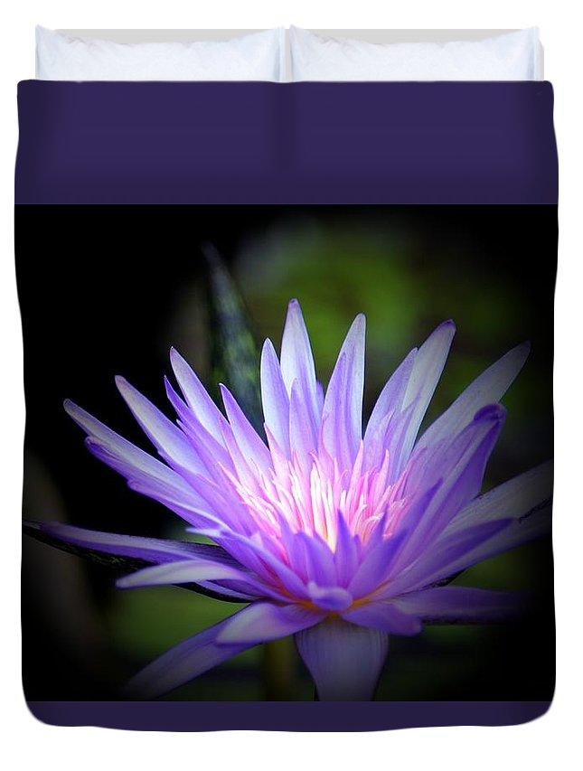 Lotus 15-01 Duvet Cover featuring the photograph Lotus 15-01 by Maria Urso