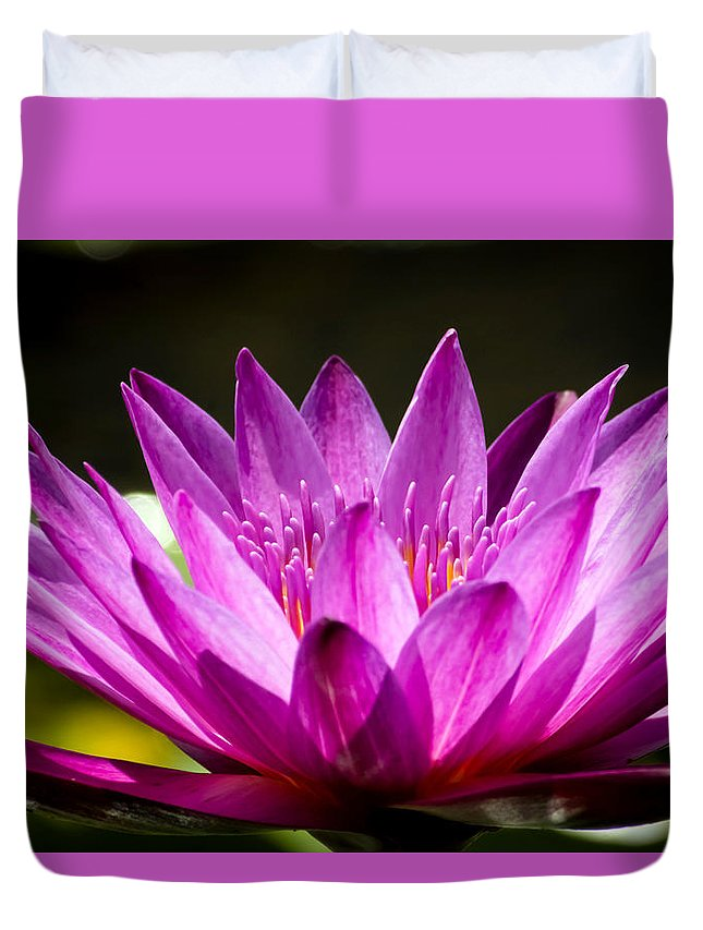 Aquatic Duvet Cover featuring the photograph Lotus 8 by Jijo George