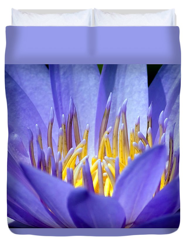 Aquatic Duvet Cover featuring the photograph Lotus 9 by Jijo George
