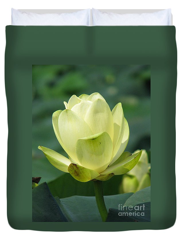 Lotus Duvet Cover featuring the photograph Lotus by Amanda Barcon