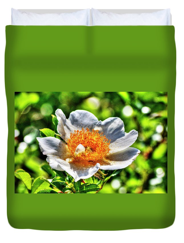 Hdr Duvet Cover featuring the photograph Lotus by Doc Hafferty