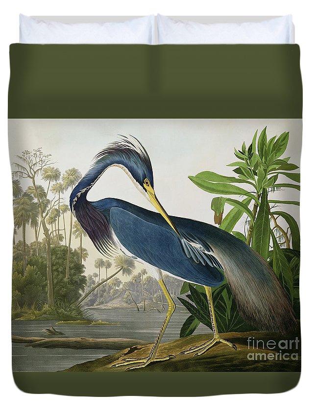Audubon Duvet Covers