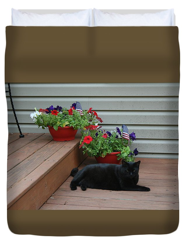 Black Cat Duvet Cover featuring the photograph Lounging Black Cat by Brad Nellis