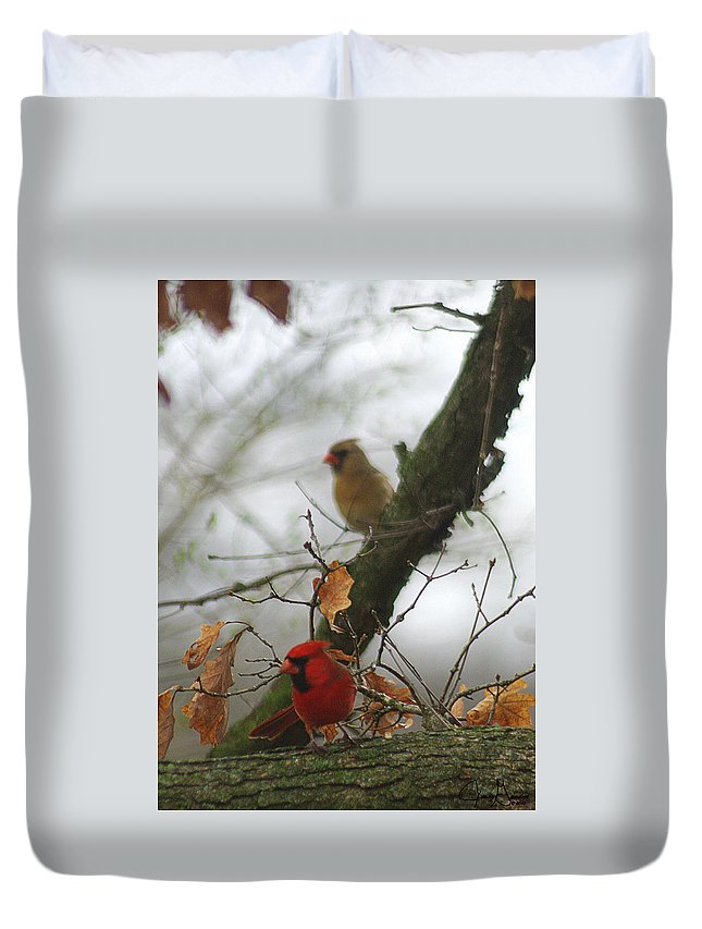 Jenny Gandert Duvet Cover featuring the photograph Love At First Sight by Jenny Gandert