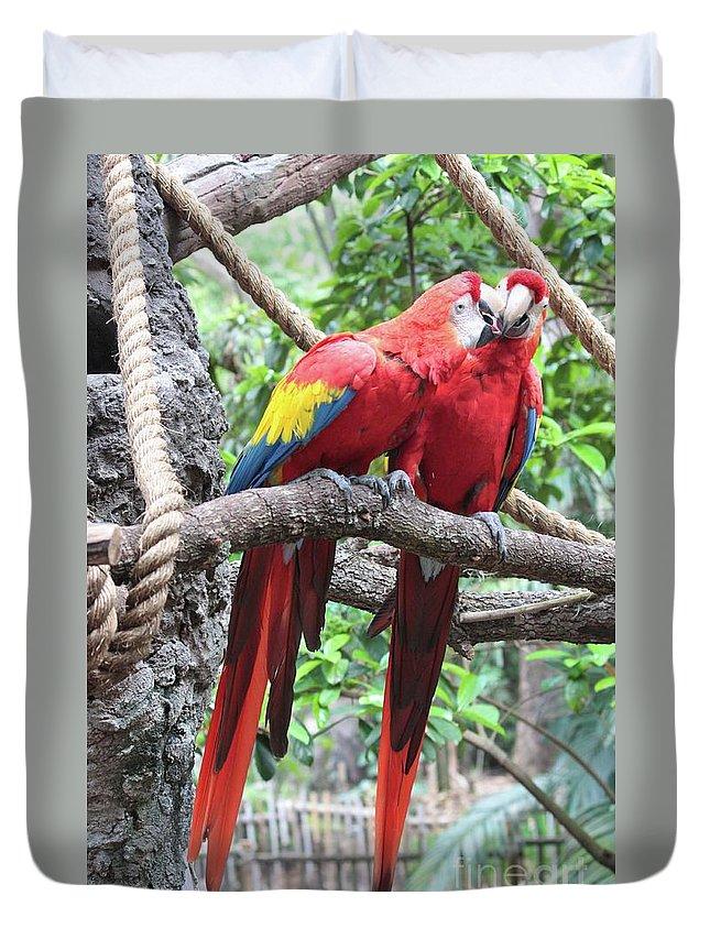 Bird Duvet Cover featuring the photograph Love Birds by Carol Groenen
