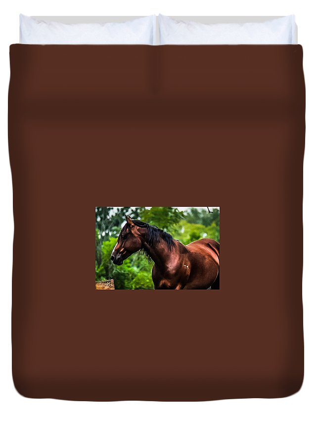 Duvet Cover featuring the photograph Love Of Horses by Sunshine Nelson
