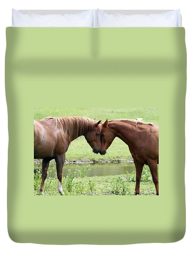 Horses Duvet Cover featuring the photograph Love by Tiffany Vest