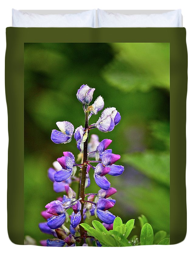 Lupine Duvet Cover featuring the photograph Lovely Lupine by Diana Hatcher