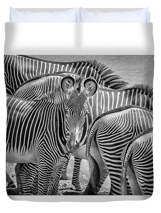 Africa Duvet Cover featuring the photograph Lovely Stripes 7589bw by Karen Celella