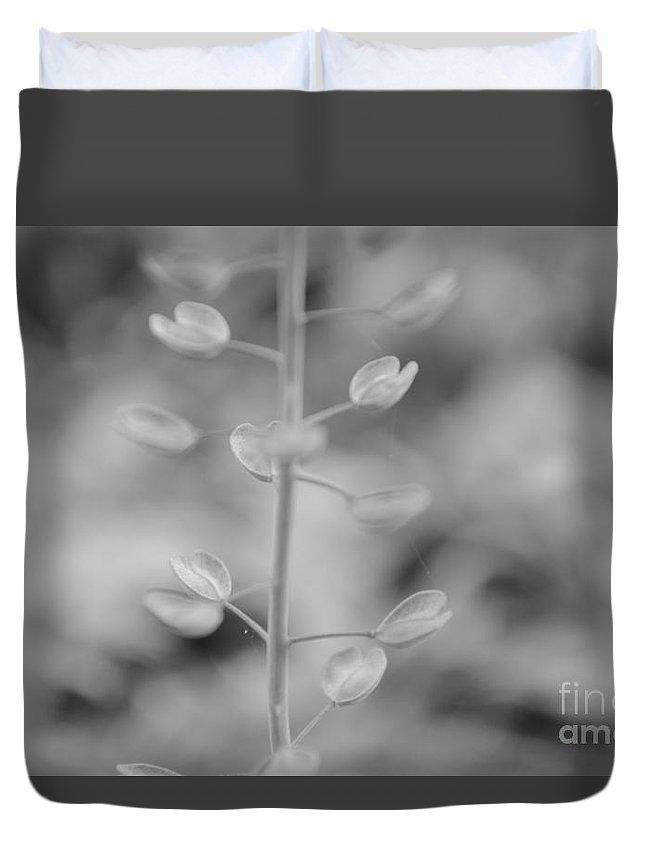 Eva Maria Nova Duvet Cover featuring the photograph Loving Greys by Eva Maria Nova
