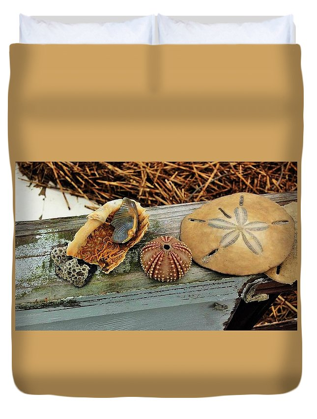 Shells Duvet Cover featuring the photograph Low-country Still-life by Rachel Chase