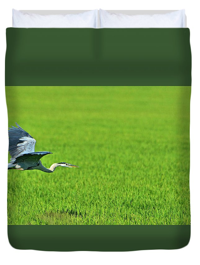 Bird Duvet Cover featuring the photograph Low Flight by Josephine Buschman