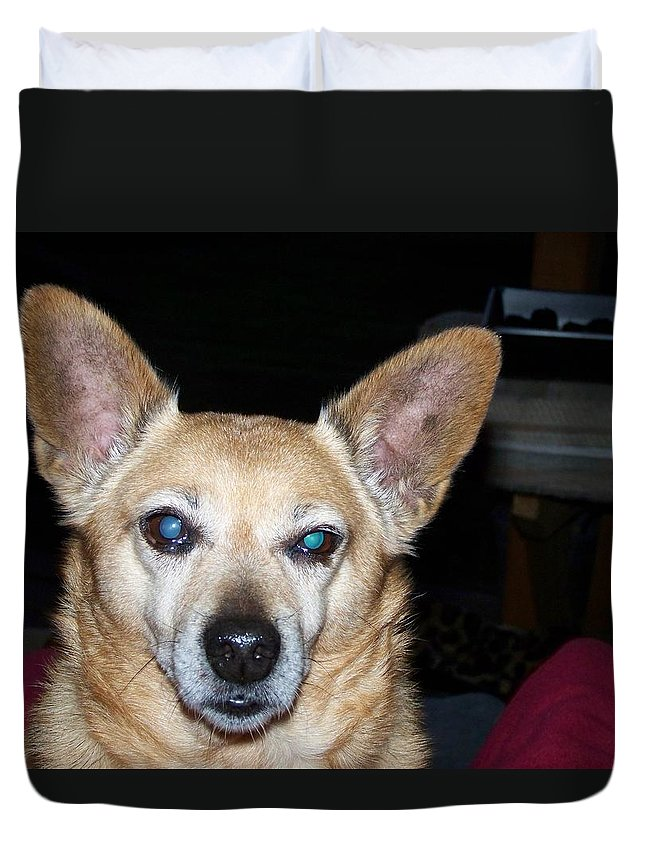 Digital Artwork Duvet Cover featuring the photograph Loyalty by Laurie Kidd