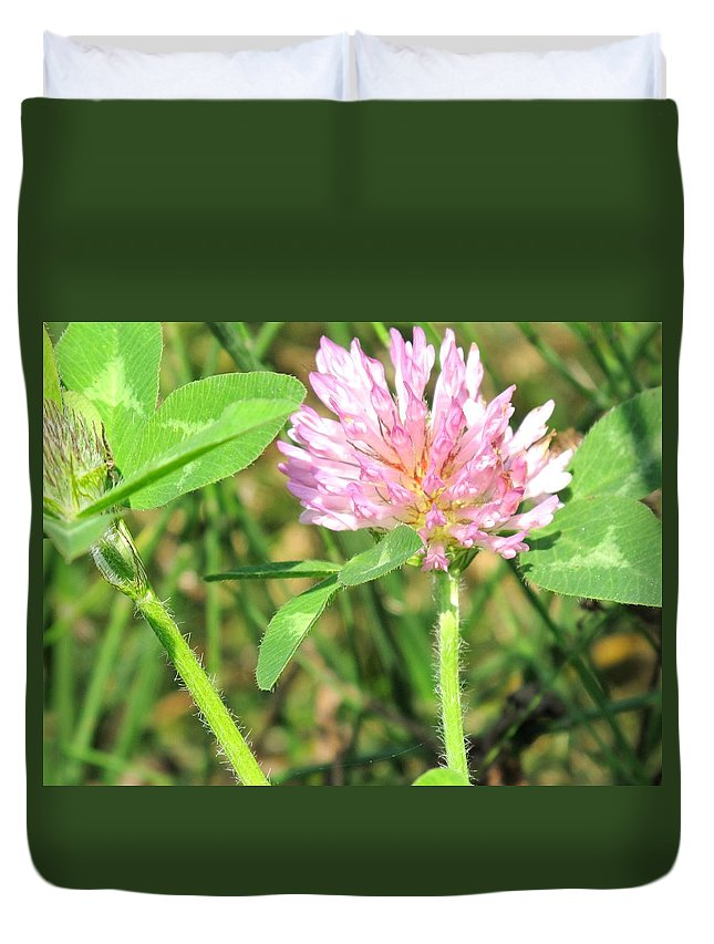 Clover Duvet Cover featuring the photograph Lucky Clover by Ian MacDonald