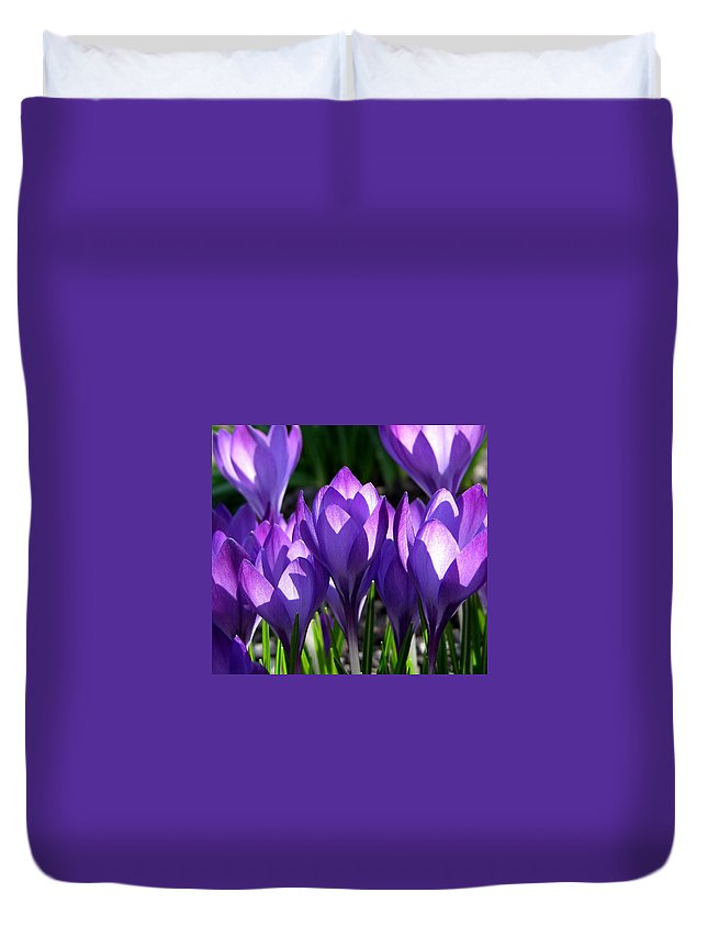 Crocus Duvet Cover featuring the photograph Luminous Floral Geometry by Byron Varvarigos