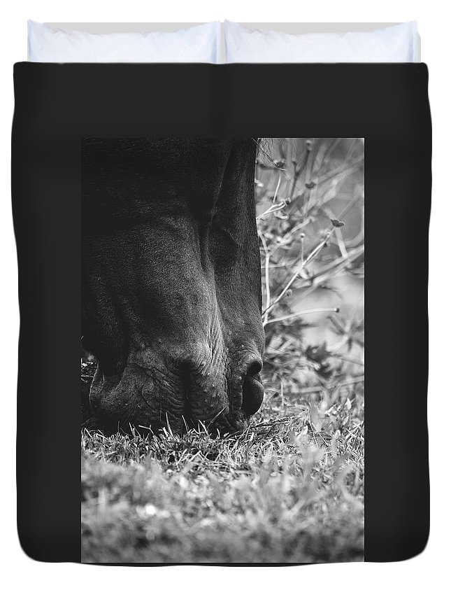 Horses Duvet Cover featuring the photograph Lunch by H Roberts Photography