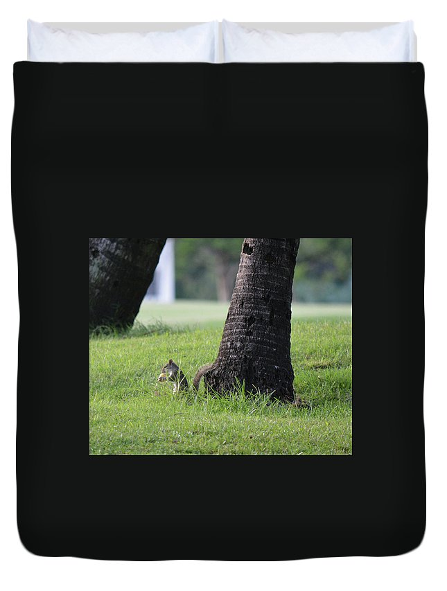 Squirrel Duvet Cover featuring the photograph Lunch Time? by Arlin Harder