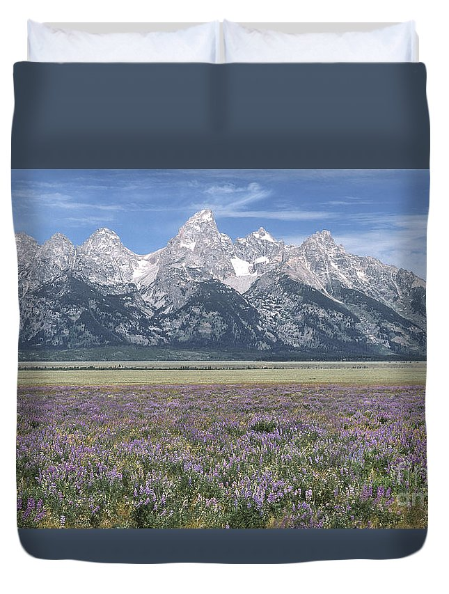 Grand Teton Duvet Cover featuring the photograph Lupine And Grand Tetons by Sandra Bronstein