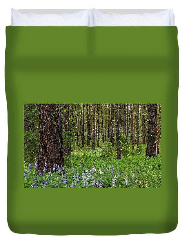 Forest Duvet Cover featuring the photograph Lupine Carpet by Mike Dawson