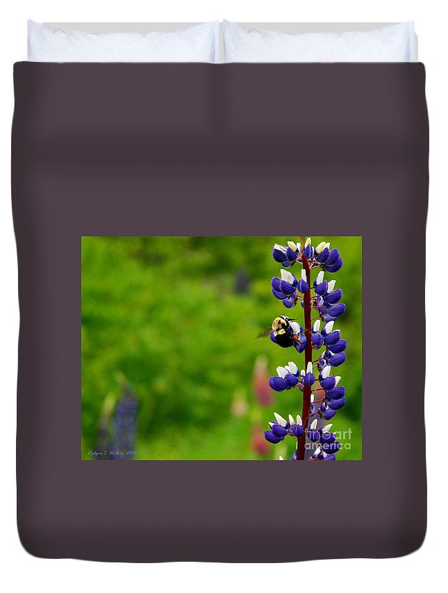 Canada Duvet Cover featuring the photograph Lupins 2016 7 by Rodger Wilkie