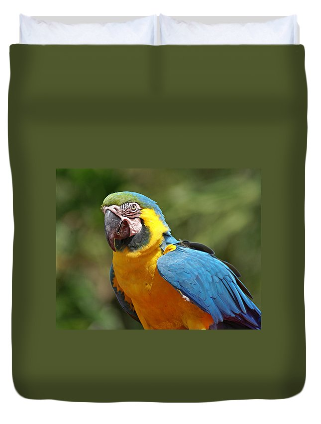 Parrot Duvet Cover featuring the photograph Macaw by Heather Coen