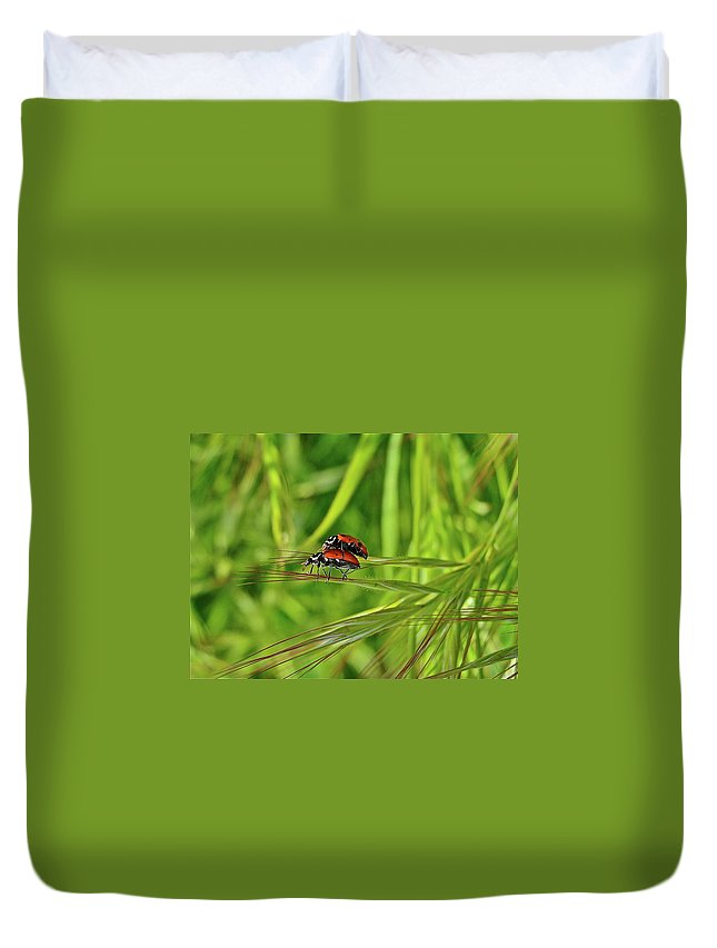 Insects Duvet Cover featuring the photograph Macro Acrobats by Diana Hatcher