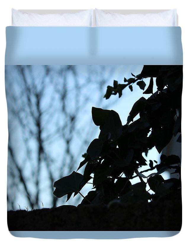 Macro Duvet Cover featuring the photograph Macro On Leaves by Alireza Khoddam