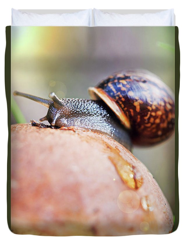 Anna Maloverjan Duvet Cover featuring the photograph Macro World by Anna Maloverjan