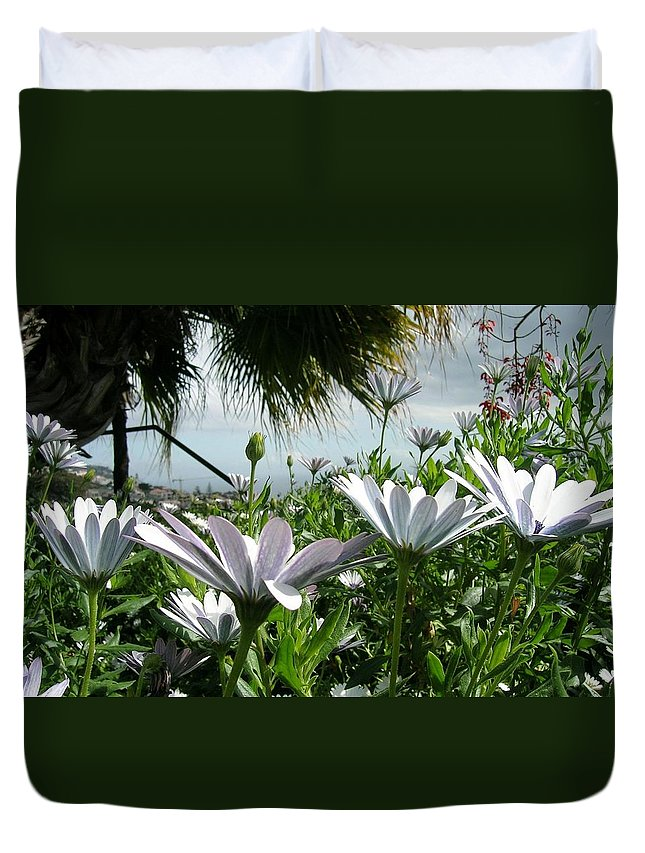 Landscape Duvet Cover featuring the photograph Madeira Daisies by Valerie Ornstein