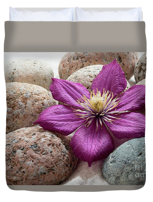 Meditation Duvet Cover featuring the photograph Clematis Flower On Meditation Stones by Michelle Himes