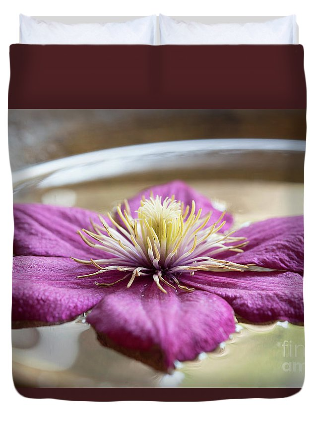 Meditation Duvet Cover featuring the photograph Peaceful Clematis by Michelle Himes