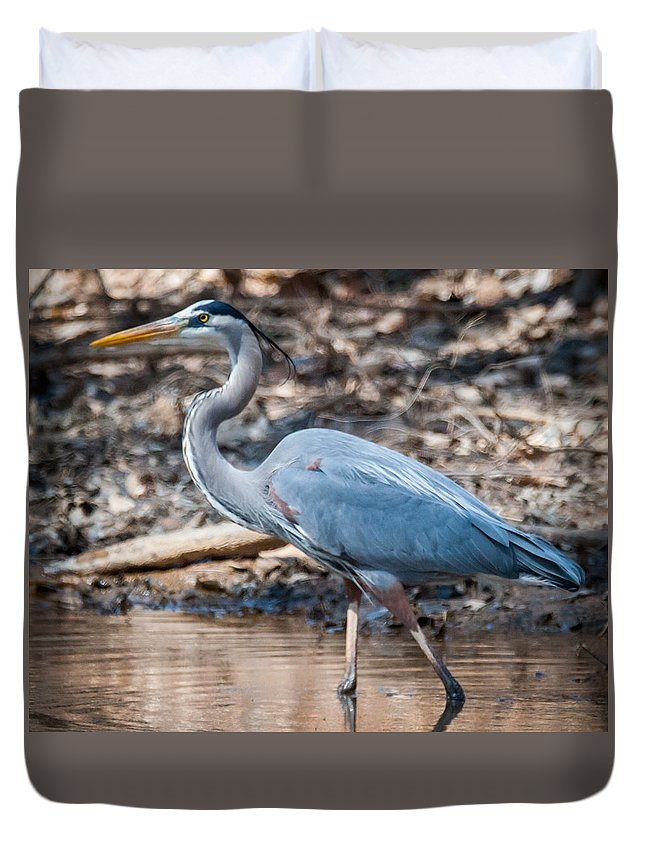 Blue Heron Duvet Cover featuring the photograph Magestic Heron by William Krumpelman