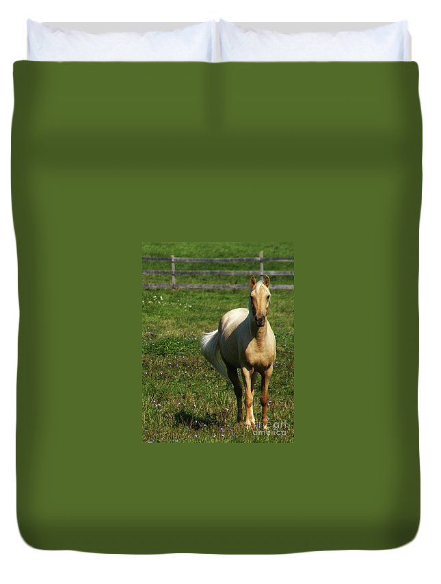 Horse Duvet Cover featuring the photograph Maggie - Michigans Morning Breeze by Linda Shafer