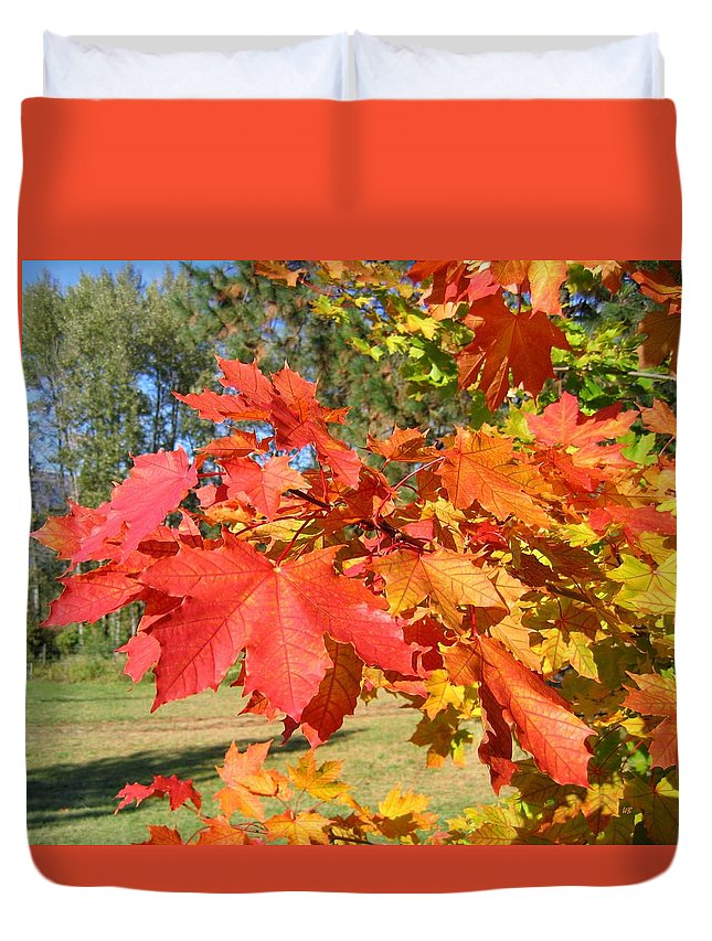 Maple Leaves Duvet Cover featuring the photograph Magnificent Maple Leaves by Will Borden