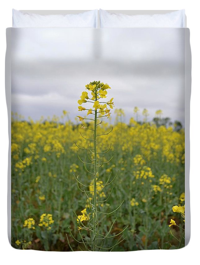 Flower Duvet Cover featuring the photograph Magnificent Mustard by Nancy Peele