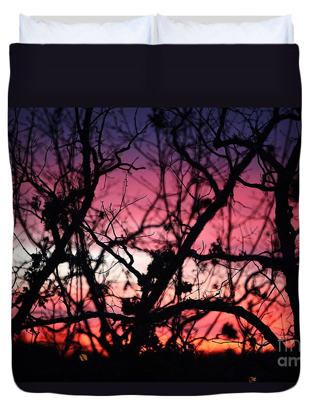 Sunset Duvet Cover featuring the photograph Magnificent Sunset And Trees by Nadine Rippelmeyer