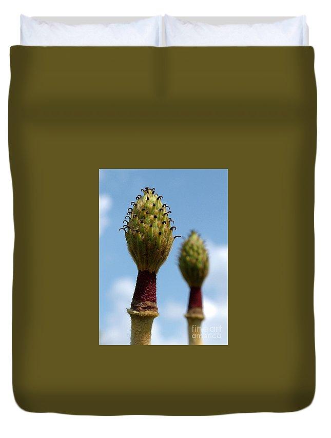 Magnolia Duvet Cover featuring the photograph Magnolia by Bernd Billmayer