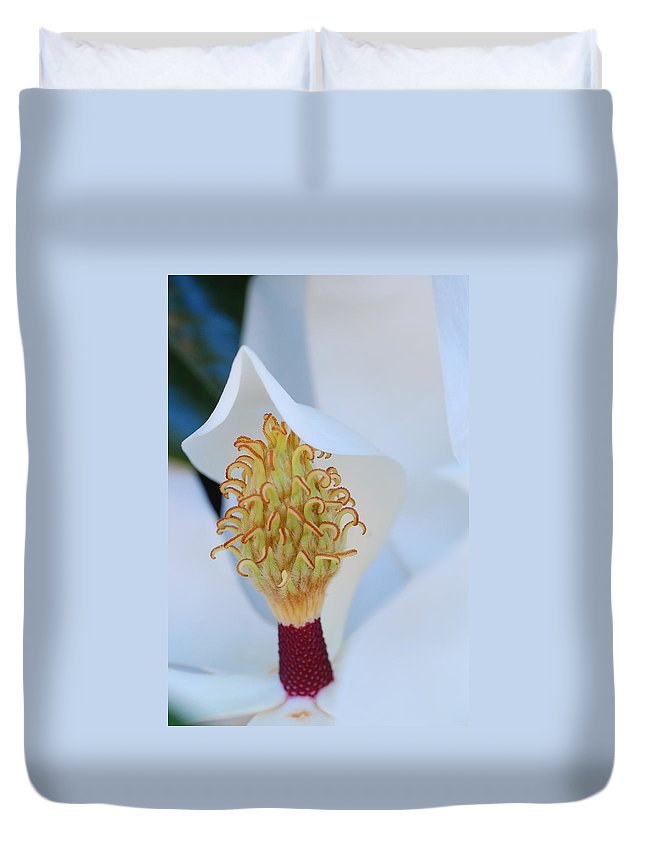 Flower Duvet Cover featuring the photograph Magnolia Blossom 1 by Amy Fose
